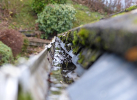 Cleaning Gutters and Downpipes
